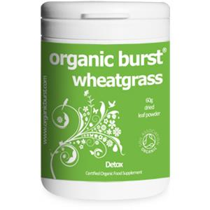 Organic Burst Wheatgrass